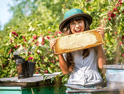Ce mai manâncă albinele în afară de polen și nectar și de ce