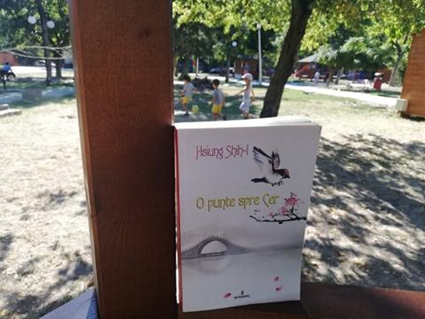 O punte spre cer- o carte ca o îmbrățișare blândă