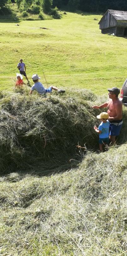 la fân în satul ciocanu